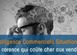 L'intelligence Commerciale Situationnelle