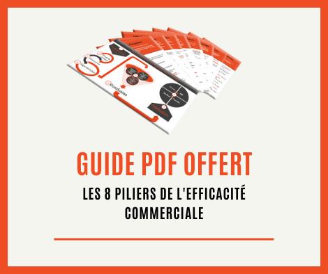 Technique de vente pdf gratuit
